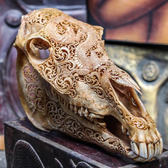 Dragon skull 1