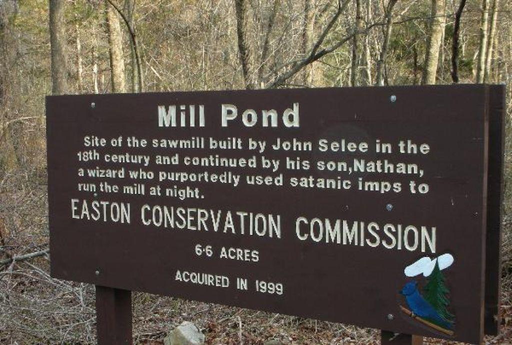 mill pond wizard